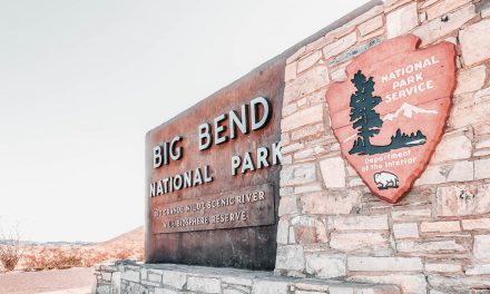 Big Bend National Park Travel Guide